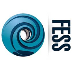 Fess Electrical